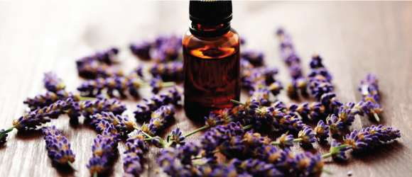 carrie-aromatherapy