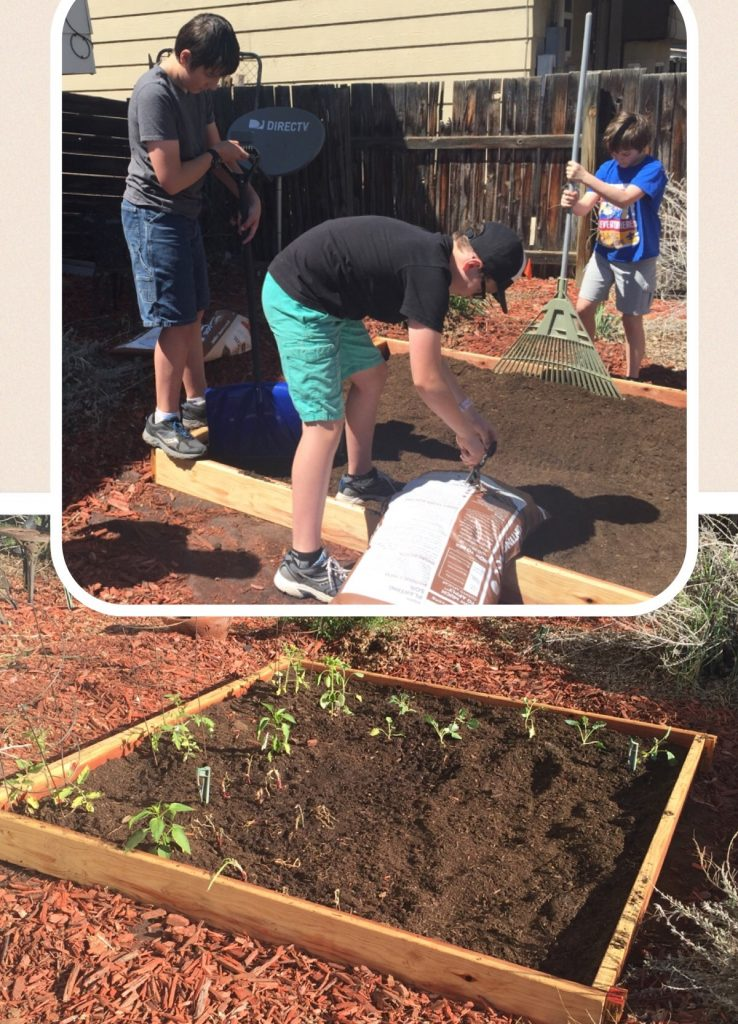 Get your family members helping out around the garden! My niece and nephews helped me earlier this month with my first garden.